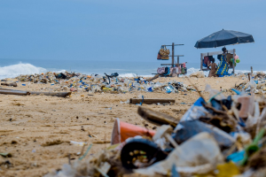 Cape Town Clamps Down on Single-Use Plastic