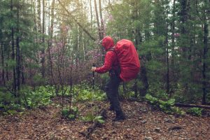 9 Tips for Hiking in Wet Weather5