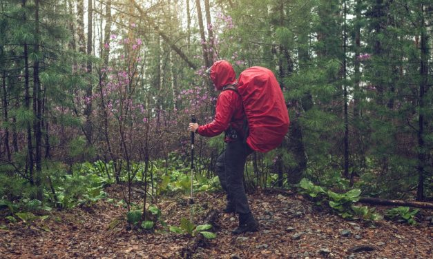 9 Tips for Hiking in Wet Weather