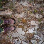 A Rain-Soaked Adventure in the Boosmansbos Wilderness Area