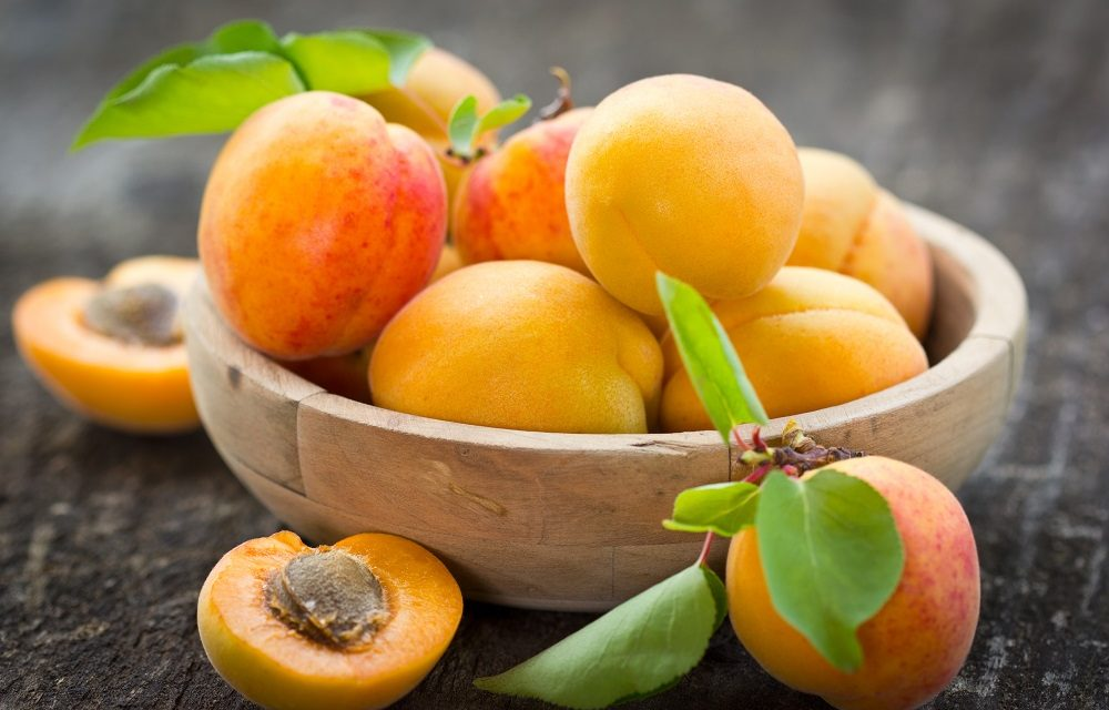 Beauty Spotlight on Apricot Kernel Oil