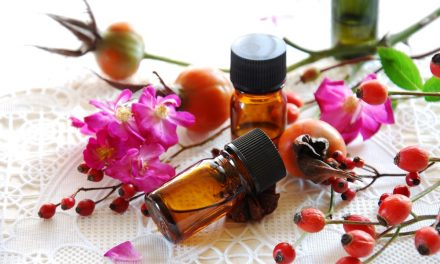 Beauty Spotlight on Rosehip Oil