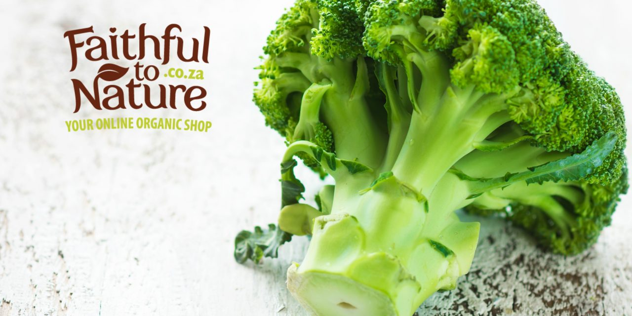 Broccoli Leaf – Introducing the Humble New Superfood