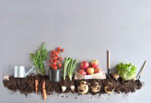 Composting_web