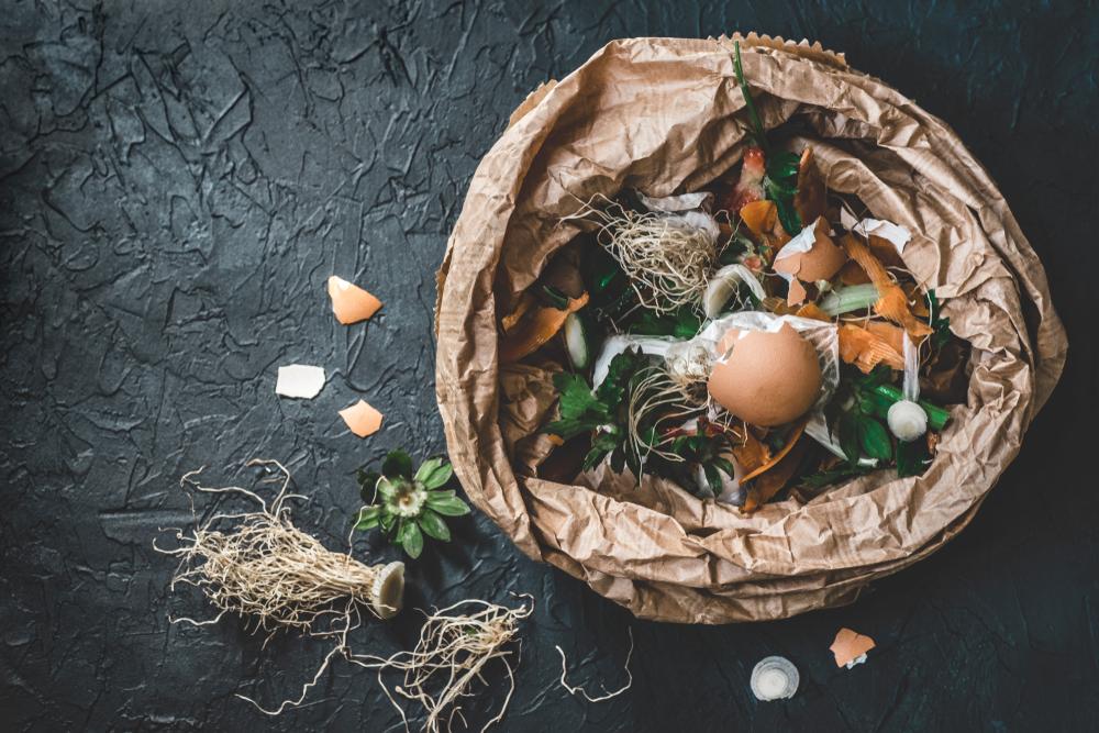 Crazy composting ideas