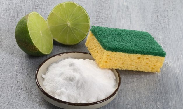 Spotlight on YOUR Top Green Cleaning Tips!