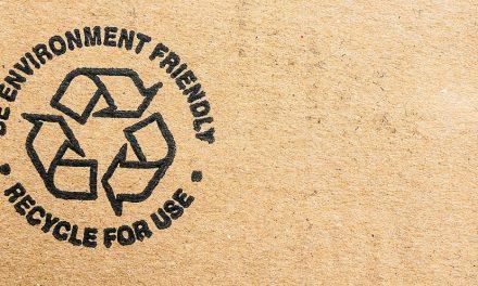 6 Companies Utilising Eco-Friendly Conscious Packaging
