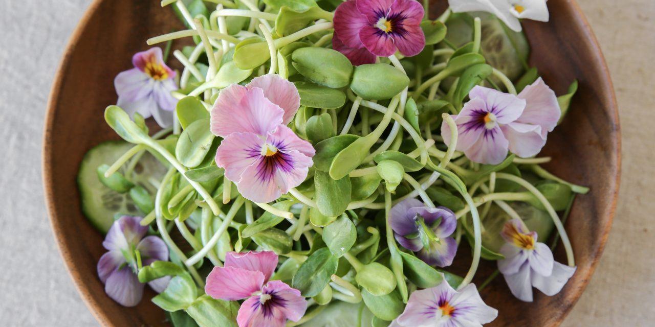 Edible flowers: Make a Super Pretty Salad!