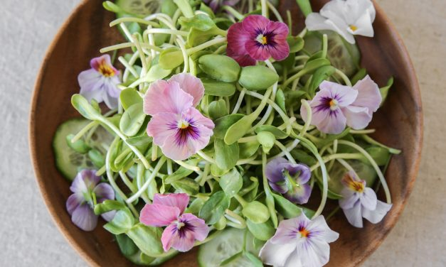 Edible flowers: Make a Super Pretty Salad!