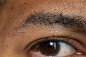 Eyebrow DIY While You're Stuck At Home