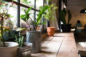 Garden-Kitchen_web