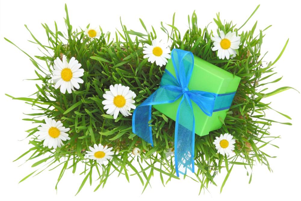 Get a Head-Start on Festive Organic Gifting
