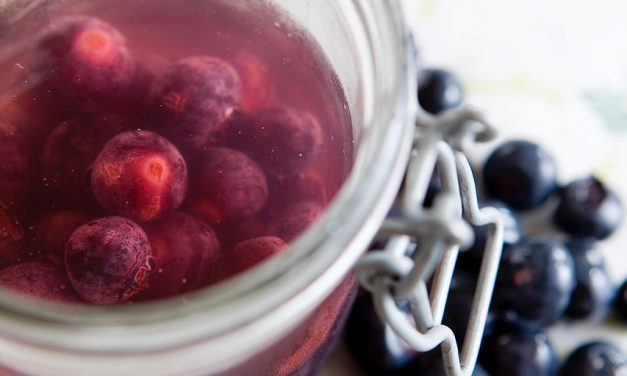 Immune Boosting Bubbling Berry Recipe for Kids