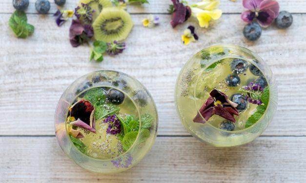 Kombucha Mocktails for Summer: Kicking Kiwi Cooler