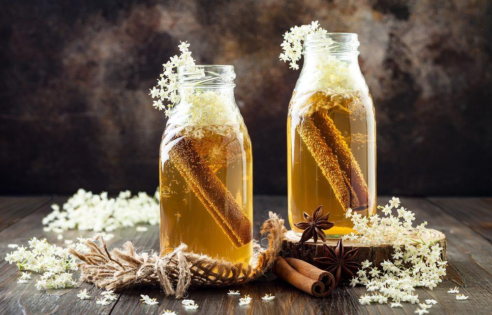 Kombucha – The Tasty Tonic with Amazing Benefits