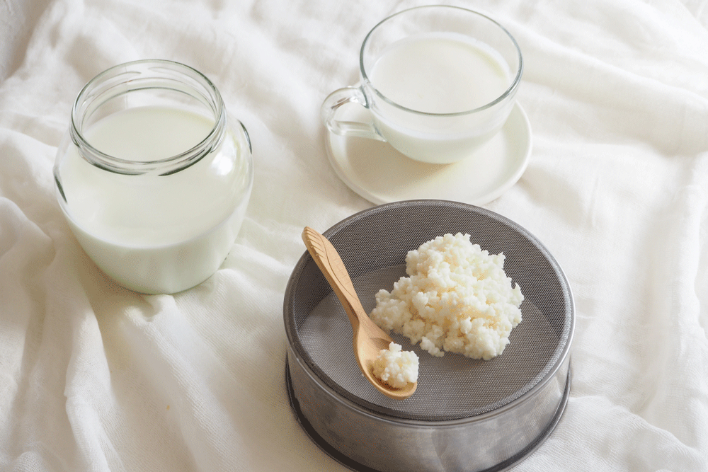 Make-Your-Own-Kefir---The-Probiotic-Drink-Your-Gut-Will-Love