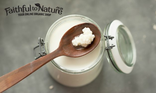 Make Your Own Kefir – the Probiotic Drink Your Tummy Will Love