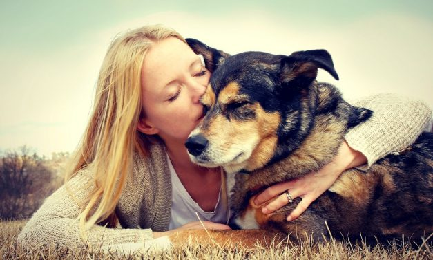 Natural Pet Care Tips for Winter