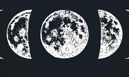 Organic Gardening & Using The Moon
