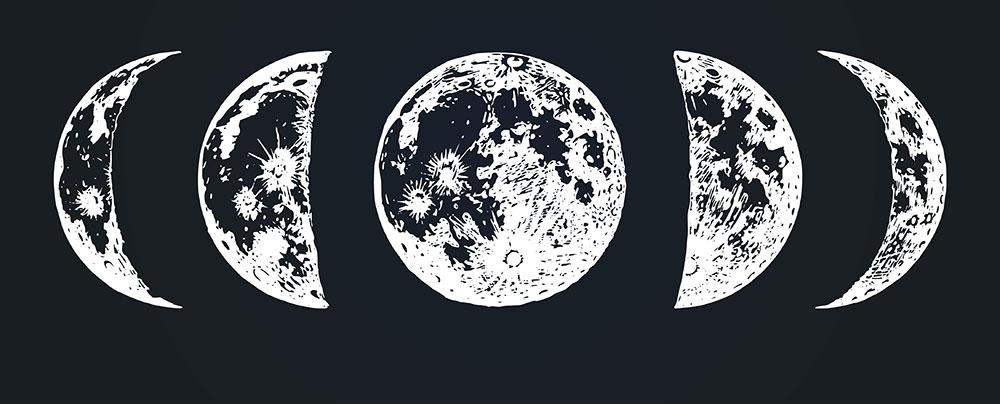 Organic-Gardening-Moon