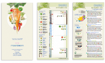 Moonbloom Food Planting Calendar: How It Works and Tips For Beginner Gardeners