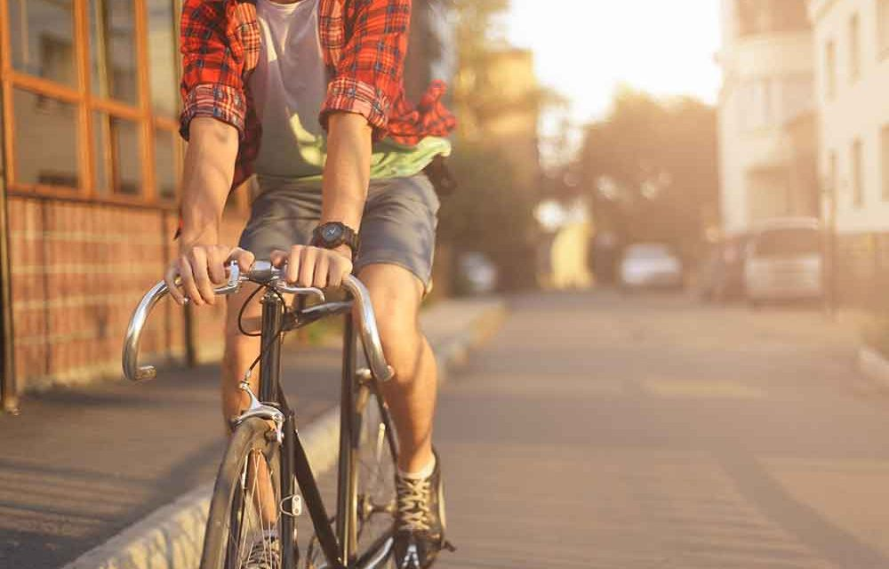 The 12 Best Bicycle Tours in Cape Town