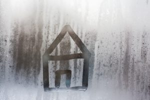 The Dangers of Humidity & Damp in Your Home
