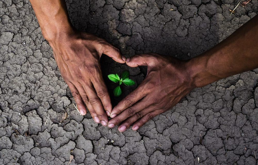 The Hard Truth: Seasonal Changes & Global Warming