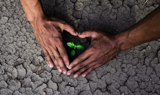 The Hard Truth Seasonal Changes & Global Warming