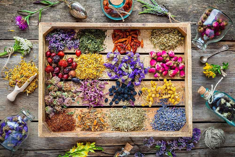 Top-10-Herbs_web