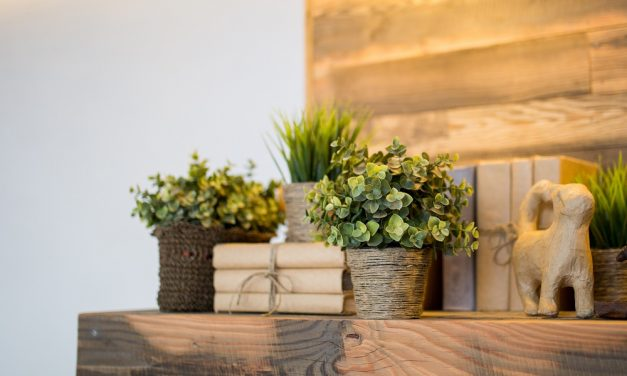 Power of The Zen: 6 Ways to Simplify Your Home