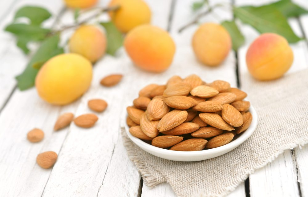 The Bitter-Sweet Question: Are Apricot Kernels Safe to Eat?