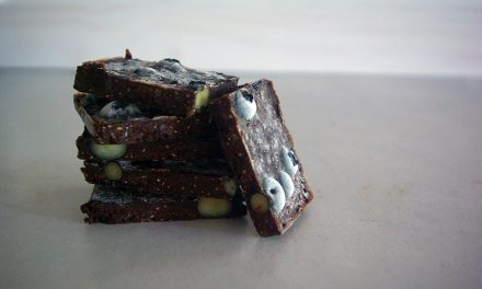 Easy Homemade Chocolates with Blueberry & Chia
