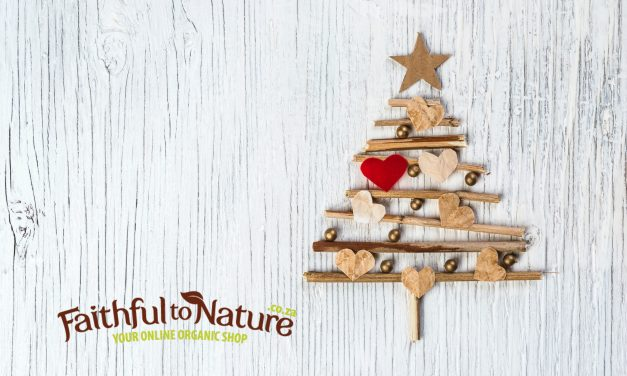 Alternative Christmas Trees for Greenies
