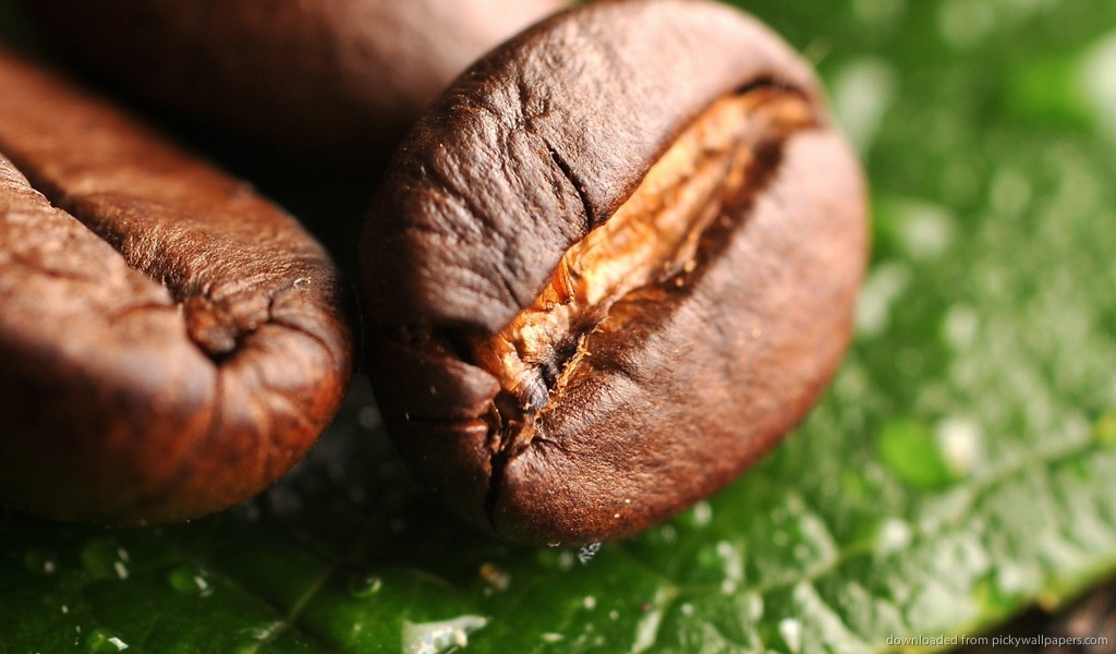 Coffee Beans: A Wake-Up Call for your Skin