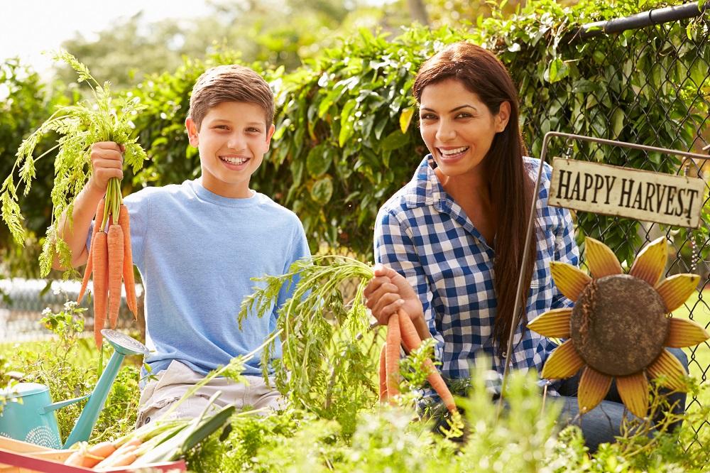 Five Gardening Hacks