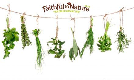 Healing Herbs You Can Grow Yourself