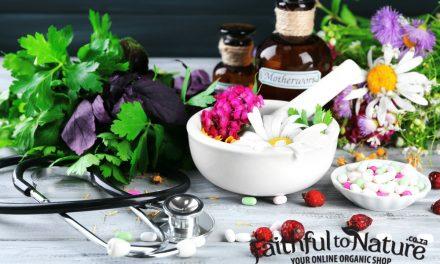10 Natural Antibiotics our Ancestors Used Instead of Pills