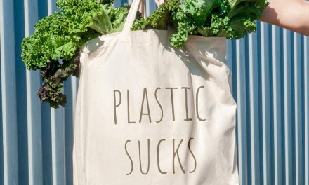 Q&A: How and Why SPAR in the Eastern Cape is Working to STOP PLASTIC