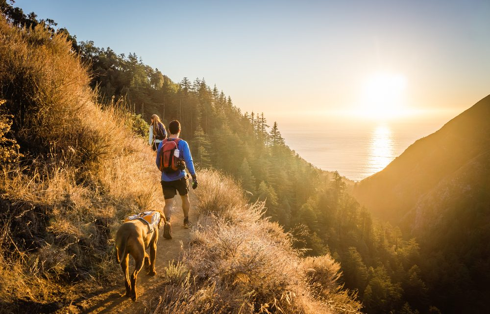 10 Reasons I Fell in Love with Hiking (and so Could You)