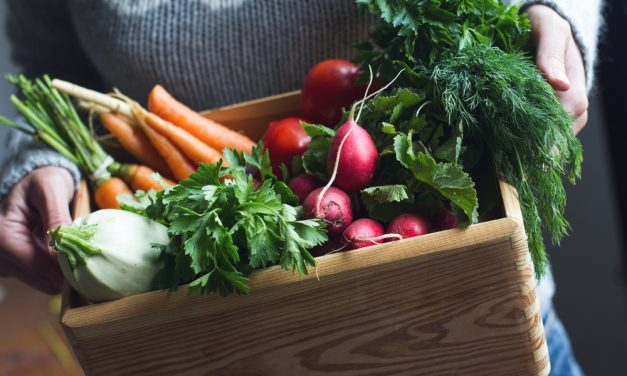 The Green Goddess Guide to Creating an Eco-Friendly Kitchen