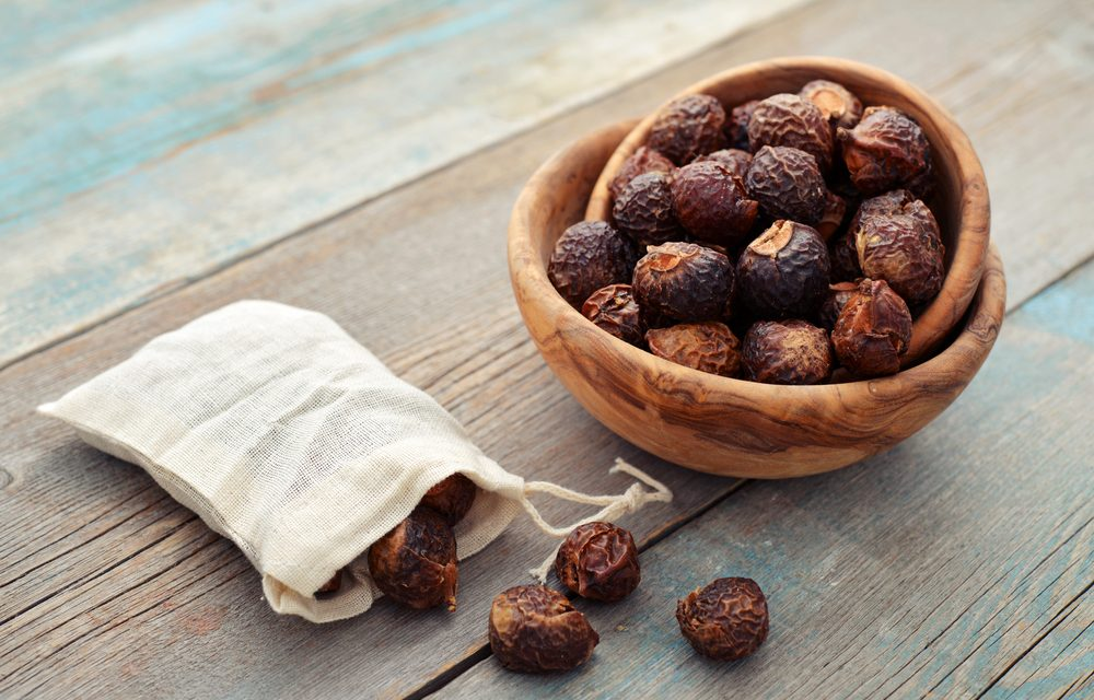 What on Earth are Soap Nuts?