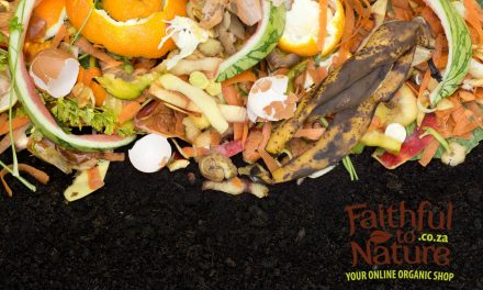Why It's Common Sense To Compost