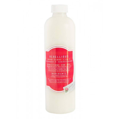 Hey Gorgeous Rebellious Mane Tamer 2-in-1 Shampoo & Conditioner