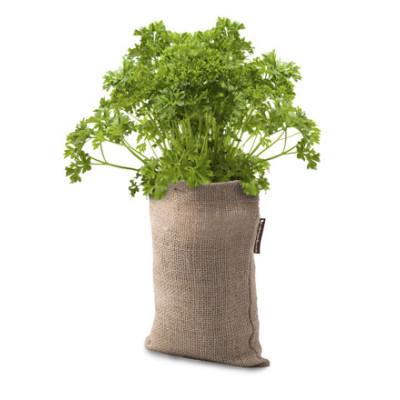 Microgarden Growbag Herbs